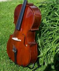 merano_cello.jpg