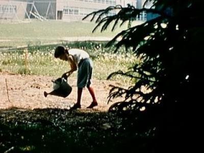 1959_garden.jpg